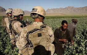 US SoldiersPoppyFields